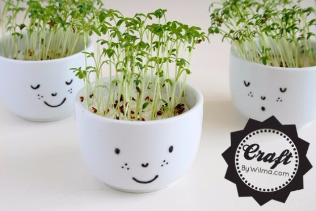 Crafts to Make and Sell - DIY Cress Cups with a Face - Cool and Cheap Craft Projects and DIY Ideas for Teens and Adults to Make and Sell - Fun, Cool and Creative Ways for Teenagers to Make Money Selling Stuff to Make http://diyprojectsforteens.com/crafts-to-make-and-sell-for-teens