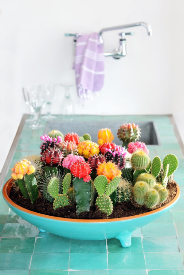 Cool Turquoise Room Decor Ideas - Succulent Bowl - Fun Aqua Decorating Looks and Color for Teen Bedroom, Bathroom, Accent Walls and Home Decor - Fun Crafts and Wall Art for Your Room