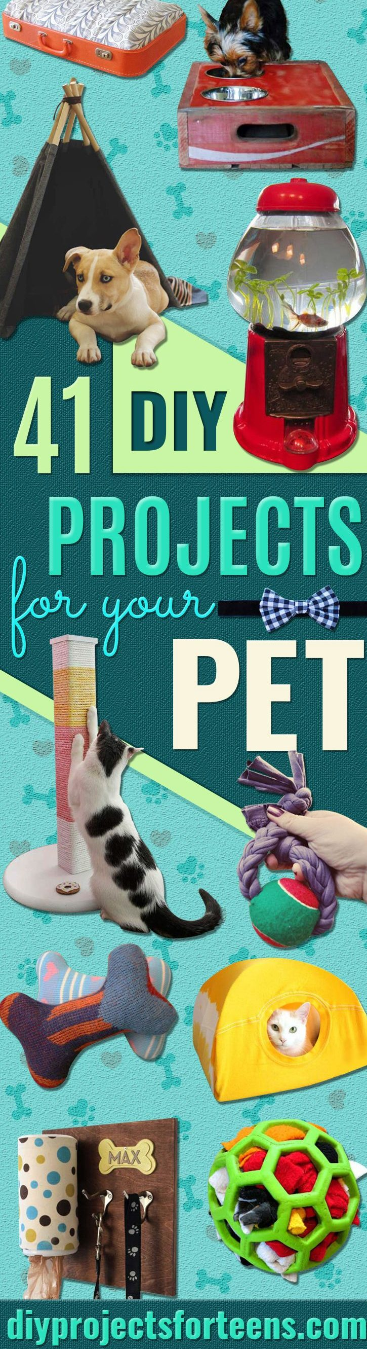 DIY Projects for Your Pet -Cat and Dog Beds, Treats, Collars and Easy Crafts to Make for Toys - Homemade Dog Biscuits, Food and Treats - Fun Ideas for Teen, Tweens and Adults to Make for Pets