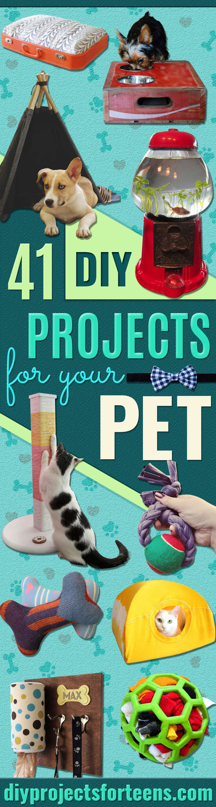 41 Crafty Diy Projects For Your Pet