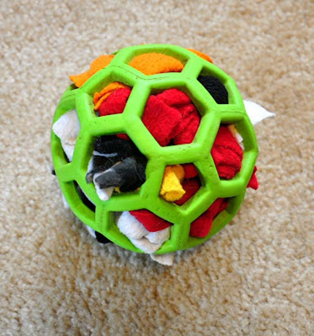 DIY Projects for Your Pet - Easy Do It Yourself Dog Toy - Cat and Dog Beds, Treats, Collars and Easy Crafts to Make for Toys - Homemade Dog Biscuits, Food and Treats - Fun Ideas for Teen, Tweens and Adults to Make for Pets http://diyprojectsforteens.com/diy-projects-pets