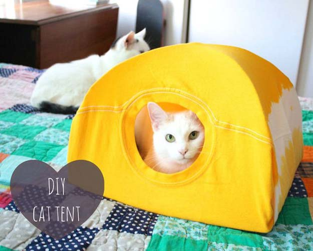 DIY Projects for Your Pet - Easy Cat Tent - Cat and Dog Beds, Treats, Collars and Easy Crafts to Make for Toys - Homemade Dog Biscuits, Food and Treats - Fun Ideas for Teen, Tweens and Adults to Make for Pets