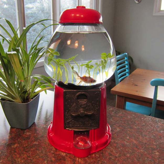 41 crafty diy projects for your pet diy projects for your pet do it yourself gumball machine fish tank cat and solutioingenieria Gallery