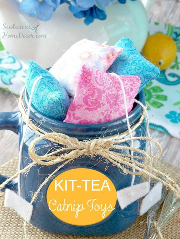 DIY Projects for Your Pet - Easy Catnip Cat Toys - Cat and Dog Beds, Treats, Collars and Easy Crafts to Make for Toys - Homemade Dog Biscuits, Food and Treats - Fun Ideas for Teen, Tweens and Adults to Make for Pets http://diyprojectsforteens.com/diy-projects-pets