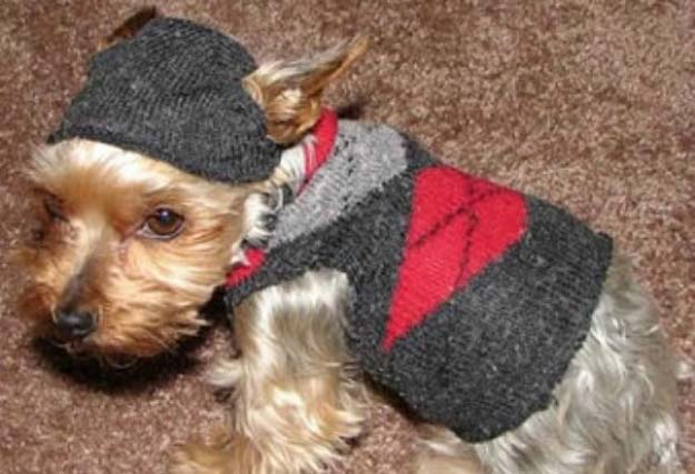 Cool Crafts Made With Old Socks - How To Make A Dog Sweater From A Sock - Fun DIY Projects and Gifts You Can Make With A Sock - Easy DIY Ideas for Teens, Teenagers, Kids and Adults - Step by Step Tutorials and Instructions for Making Room Decor, Animals, Cat, Rabbit, Owl, Puppets, Snowman, Gloves http://diyprojectsforteens.com/diy-crafts-ideas-socks