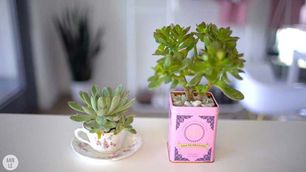 Fun DIY Ideas for Your Desk - Teatime Planters - Cubicles, Ideas for Teens and Student - Cheap Dollar Tree Storage and Decor for Offices and Home - Cool DIY Projects and Crafts for Teens http://diyprojectsforteens.com/diy-ideas-desk