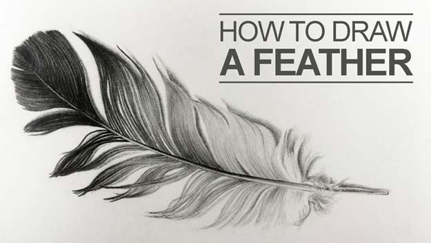Cool Drawing Tutorials - How To Draw a Feather or Feathers - Learn How To Draw Animals, Easy People, Step by Step Drawing and Tutorial With Instructions - Creative Arts and Crafts Ideas for Teens - Shapes, Shading, Buildings, School Art Projects, Drawing for Beginners and Teenagers, Kids http://diyprojectsforteens.com/cool-drawing-tutorials