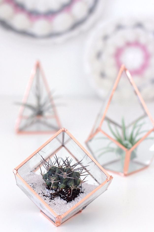 Best DIY Room Decor Ideas for Teens and Teenagers - DIY Glass Terrariums - Best Cool Crafts, Bedroom Accessories, Lighting, Wall Art, Creative Arts and Crafts Projects, Rugs, Pillows, Curtains, Lamps and Lights - Easy and Cheap Do It Yourself Ideas for Teen Bedrooms and Play Rooms #teencrafts #diydecor #roomideas #teenrooms #teendecor #diyideas