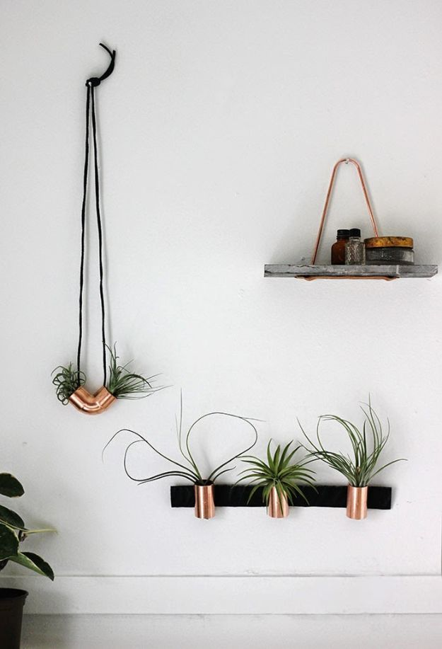 Cheap Wall Decor Ideas - Minimal Copper Airplant Holders - Cute and Easy Room Decor for Teens - Ideas for Teenager Bedroom Walls - Boys and Girls Room Canvas Wall Art and Decorating #teen #roomdecor #diydecor