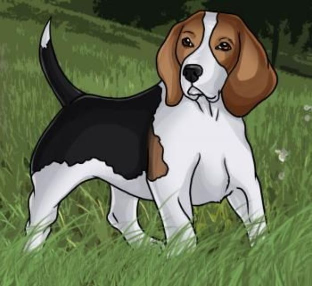 How to Draw Dogs - Draw A Beagle - Easy Step by Step Drawing Tutorial - Learn How To Draw A Dog and Cute Puppies - Cartoon and Realistic Animals