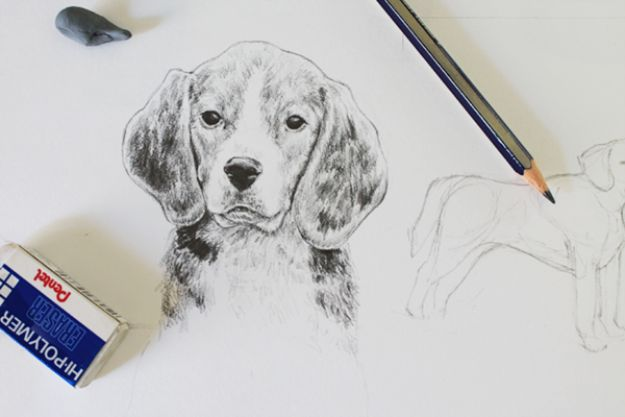How to Draw Dogs - Draw A Realistic Dog - Easy Step by Step Drawing Tutorial - Learn How To Draw A Dog and Cute Puppies - Cartoon and Realistic Animals