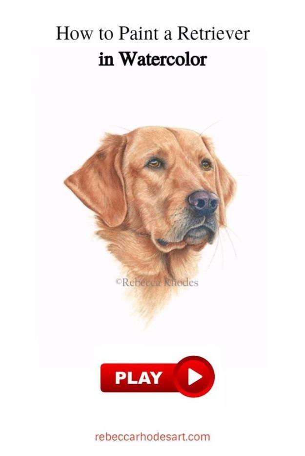 How to Draw Dogs - Draw A Retriever - Easy Step by Step Drawing Tutorial - Learn How To Draw A Dog and Cute Puppies - Cartoon and Realistic Animals