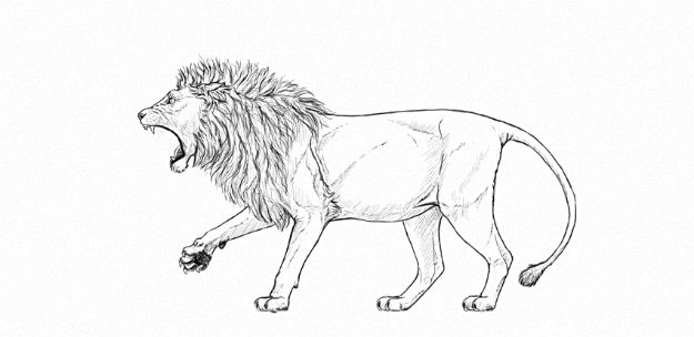 100 How To Draw Tutorials - Draw A Roaring Lion - Eyes, Hair, Face, Lips, People, Animals, Hands - Step by Step Drawing Tutorial for Beginners - Free Easy Lessons