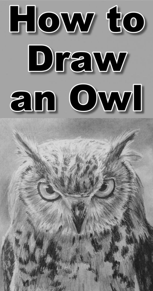 100 How To Draw Tutorials - Draw An Owl - Eyes, Hair, Face, Lips, People, Animals, Hands - Step by Step Drawing Tutorial for Beginners - Free Easy Lessons