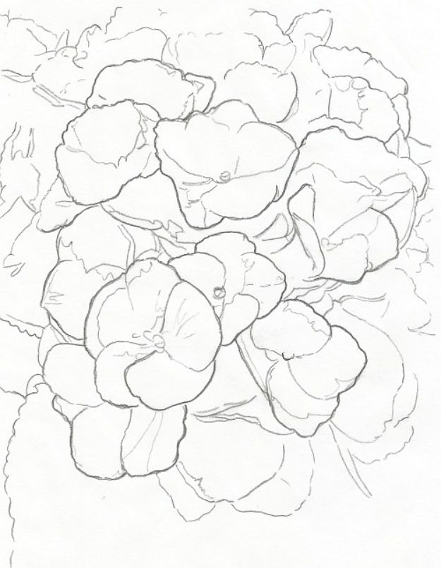 Flower Drawing Tutorials - Draw Complex Flowers - Simple Tutorial for Easy Flower Doodles, Vintage Design Ideas for Flowers, Step by Step Pencil Drawings - How to Draw a Rose, Lily, Hibiscus, Daisy