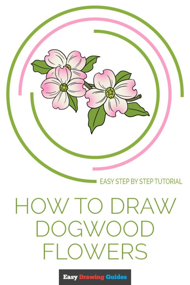 Flower Drawing Tutorials - Draw Dogwood Flowers - Simple Tutorial for Easy Flower Doodles, Vintage Design Ideas for Flowers, Step by Step Pencil Drawings - How to Draw a Rose, Lily, Hibiscus, Daisy