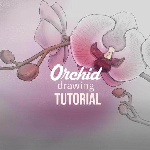 Flower Drawing Tutorials - Draw Orchids with PicsArt - Simple Tutorial for Easy Flower Doodles, Vintage Design Ideas for Flowers, Step by Step Pencil Drawings - How to Draw a Rose, Lily, Hibiscus, Daisy