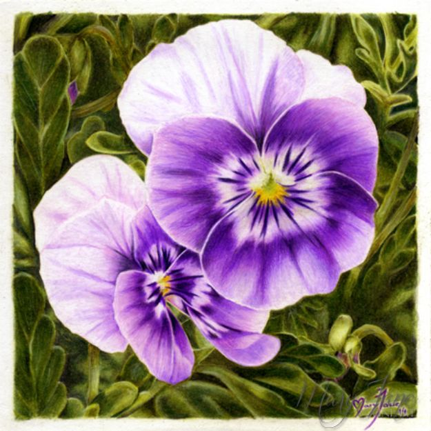 Flower Drawing Tutorials - Draw Pansies - Simple Tutorial for Easy Flower Doodles, Vintage Design Ideas for Flowers, Step by Step Pencil Drawings - How to Draw a Rose, Lily, Hibiscus, Daisy