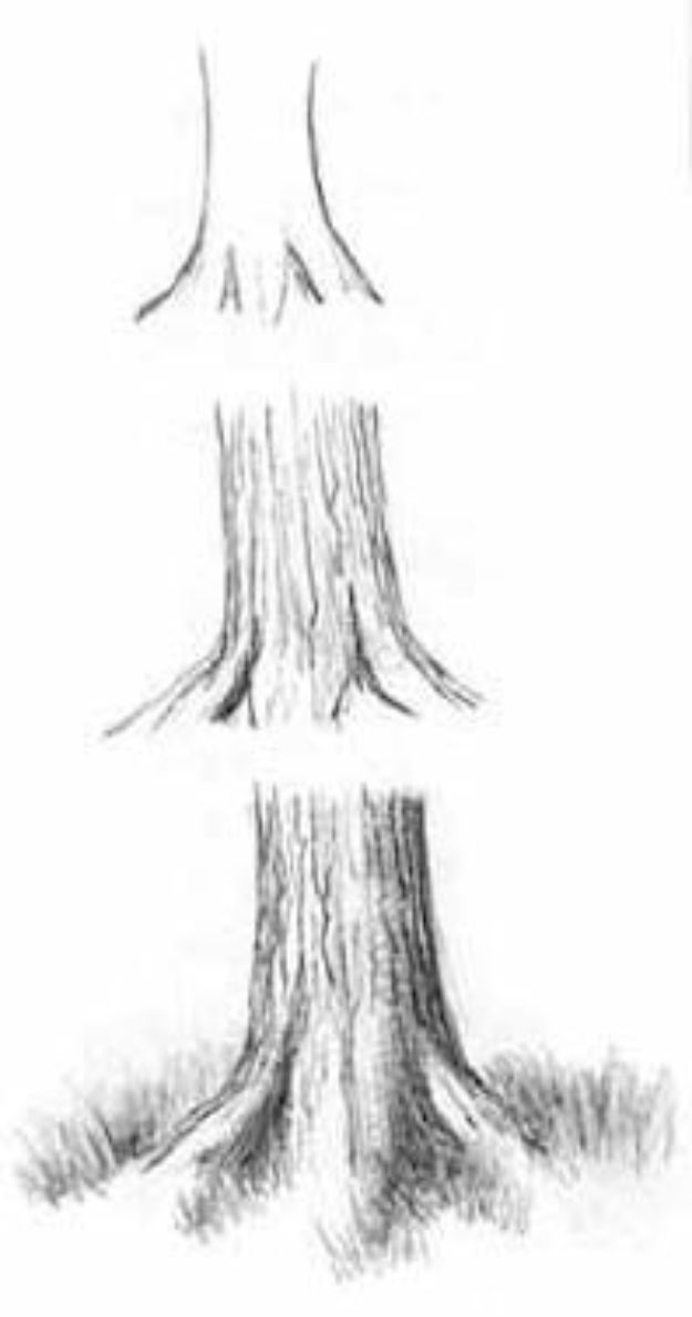 100 How To Draw Tutorials - Draw Trees with Pencil - Eyes, Hair, Face, Lips, People, Animals, Hands - Step by Step Drawing Tutorial for Beginners - Free Easy Lessons