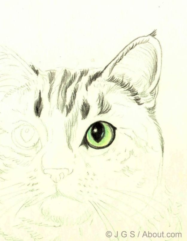 100 How To Draw Tutorials - Draw a Cat in Colored Pencil - Eyes, Hair, Face, Lips, People, Animals, Hands - Step by Step Drawing Tutorial for Beginners - Free Easy Lessons