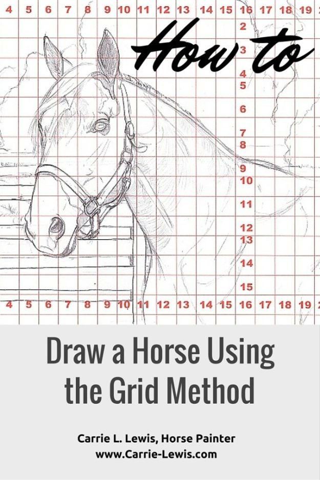 100 How To Draw Tutorials - Draw a Horse Using a Grid - Eyes, Hair, Face, Lips, People, Animals, Hands - Step by Step Drawing Tutorial for Beginners - Free Easy Lessons