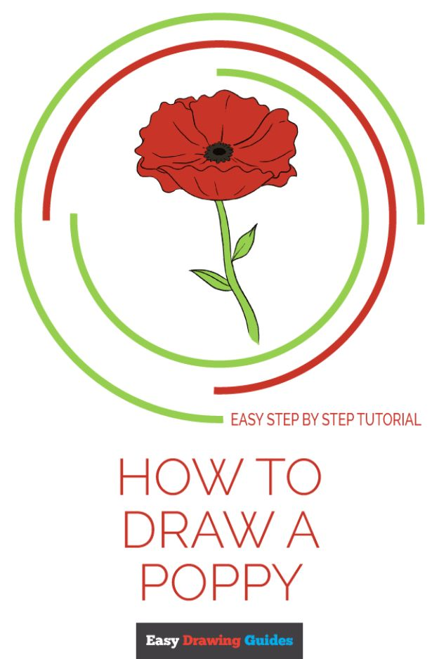 100 How To Draw Tutorials - Draw a Poppy - Eyes, Hair, Face, Lips, People, Animals, Hands - Step by Step Drawing Tutorial for Beginners - Free Easy Lessons