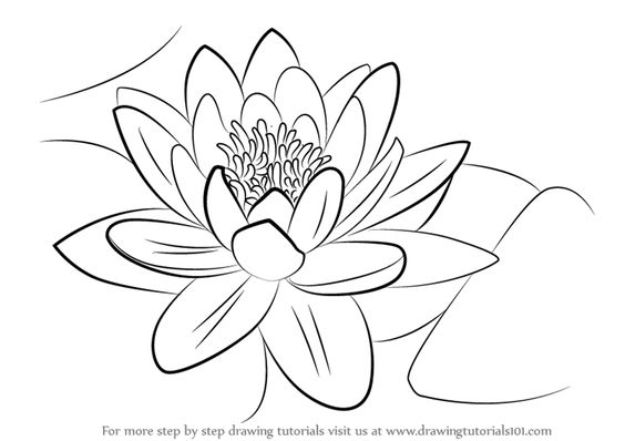 Flower Drawing Tutorials - Draw a Water Lily - Simple Tutorial for Easy Flower Doodles, Vintage Design Ideas for Flowers, Step by Step Pencil Drawings - How to Draw a Rose, Lily, Hibiscus, Daisy