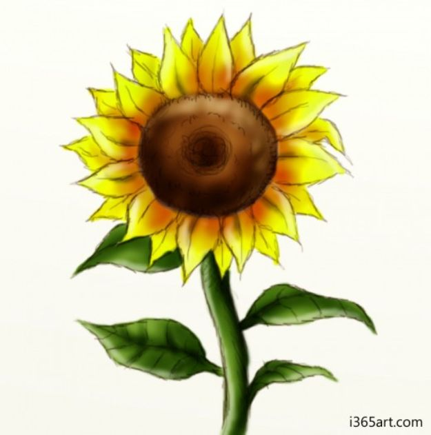 Easy Things to Draw When You Are Bored - Draw A Sunflower - Quick and Cool Drawing Lessons for Fun Art - How to Draw Basic Things, Cartoons, Animals, Flowers, People