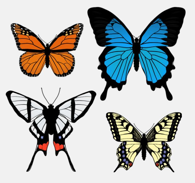 Easy Things to Draw When You Are Bored - Draw Butterflies - Quick and Cool Drawing Lessons for Fun Art - How to Draw Basic Things, Cartoons, Animals, Flowers, People
