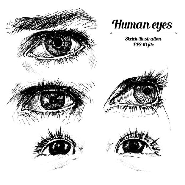 Eye Drawing Tutorials - Draw Expressive Eyes - Eays Ways to Learn How to Draw Eyes - How To Draw A Realistic Eye - Shading Eyes, Coloring Techniques and Step by Step Tutorials for Eye Drawings