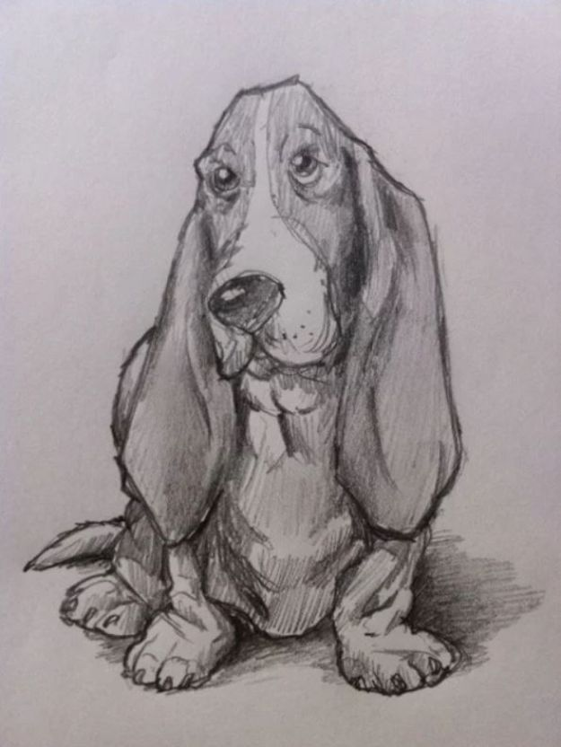 Easy Things to Draw When You Are Bored - Draw a Basset Hound Dog - Quick and Cool Drawing Lessons for Fun Art - How to Draw Basic Things, Cartoons, Animals, Flowers, People